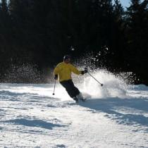 porsvi på skidor